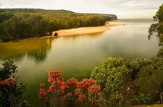 The Estuary by Terry Everson