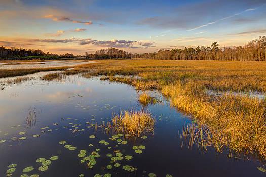 Debra and Dave Vanderlaan - The Everglades