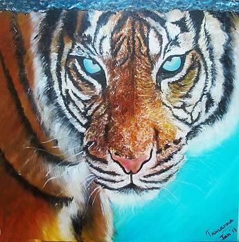 The Eye Of The Tiger by Tamanna  Sagar