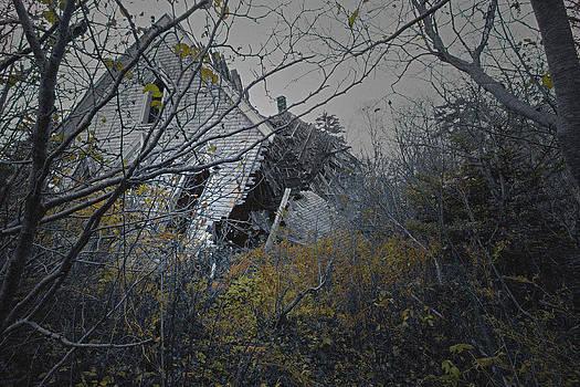 The fallen church by Gordon  Grimwade