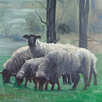 The Family of Sheep by John Reynolds