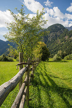 The Fence by Enrico Ackermann