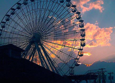 The Ferris Wheel by Lisa Merman Bender