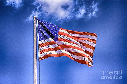 The Flag Of USA by Nicola Fiscarelli