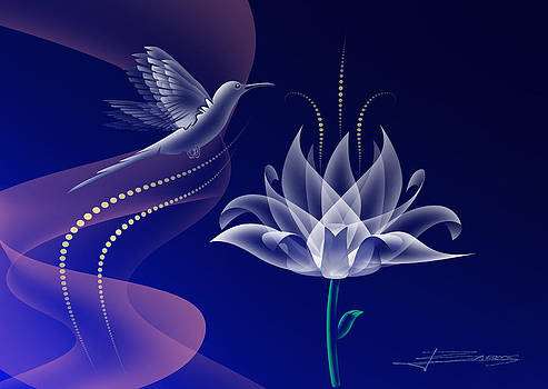 The Flower And The Bird by Nelson Barros