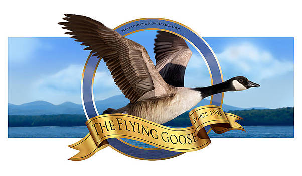The Flying Goose by Jessica LeClerc