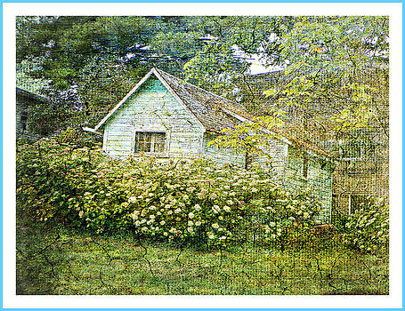 The Garden Shed by Dianne  Lacourciere