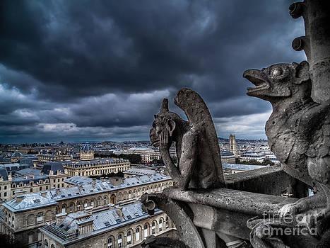The Gargoyles of Notre-Dame de Paris - France by Corinne Johnston