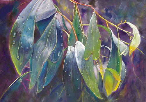 The Gentle Rain by Lynda Robinson