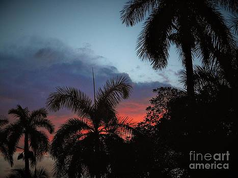 The Glowing Sky at Dusk by Debb Starr