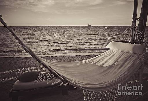The Good Life by Valerie Morrison