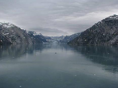 The Great Ice by Ricardo Antoni