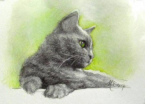 The green eye by Janet McGrath
