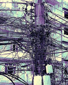 Dominic Piperata - The Grid 1