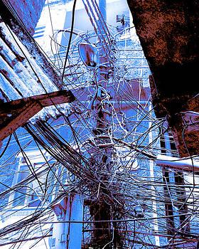Dominic Piperata - The Grid 2