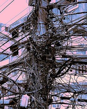 Dominic Piperata - The Grid 4