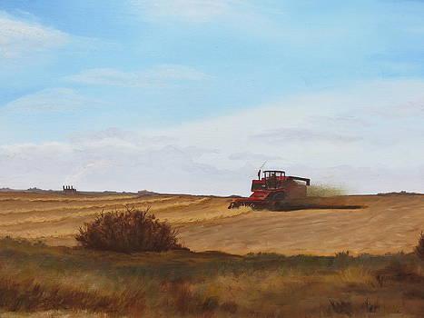 The Harvest by Linda Koch