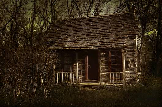 The Hermit's Cabin by Julie Dant