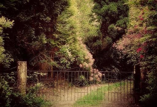 Marilyn Wilson - The Hidden Garden