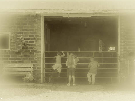 The Horse Barn is Timeless by Shirley Tinkham