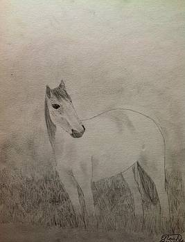 The Horse by Noah Burdett