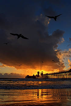 The Jutting Pier at Sundown  by Donna Pagakis