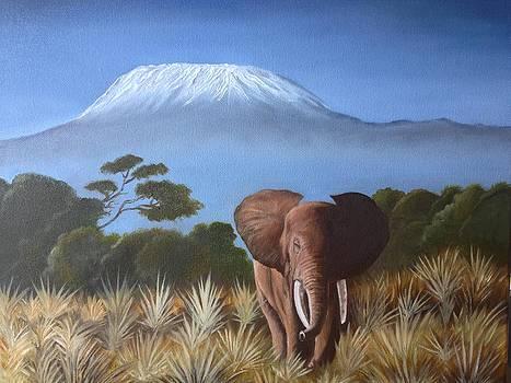 The Kilimanjaro by Caroline  Stuhr