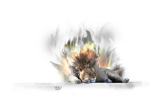 The King by Farhan Raza Naqvi