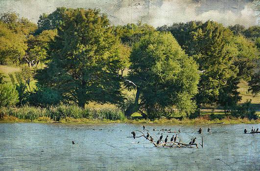 The Lake by Joan Bertucci