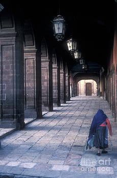 John  Mitchell - THE LAST JOURNEY San Miguel de Allende