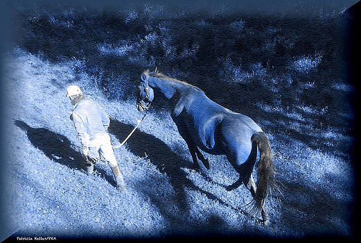 The Light and Shadows of A Man and His Horse by Patricia Keller