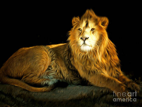 Wingsdomain Art and Photography - The Lion 201502113-2brun