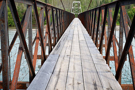 Mary Lee Dereske - The Long Bridge