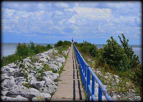 The Long Walk by Terri K Designs
