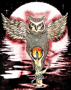 The Magical Owl by Gerald Griffin
