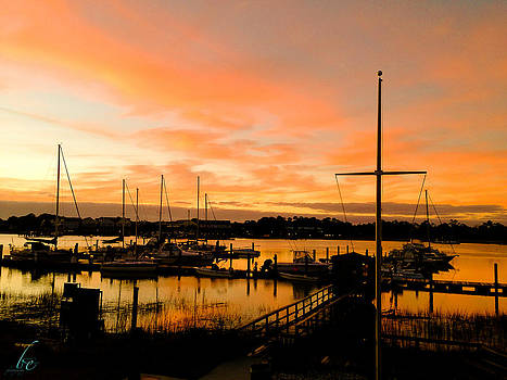 The Marina  by Bonnes Eyes Fine Art Photography