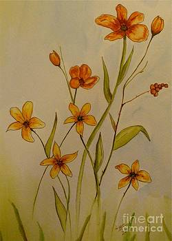 The Meadow by Bonnie Schallermeir
