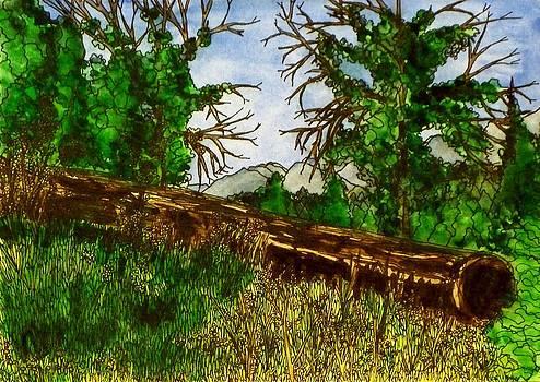 The Meadow's Edge by Donna Whitsitt