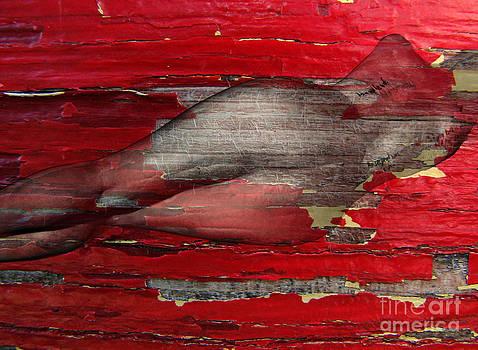 Andrea Kollo - The Mean Reds