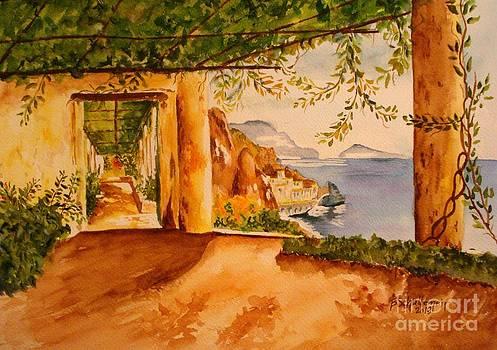 The Med by Bonnie Schallermeir