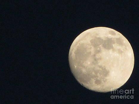 The Moon  by John Morris
