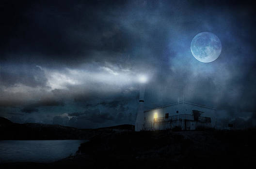 The Moon Touches Your Shoulder by Taylan Soyturk