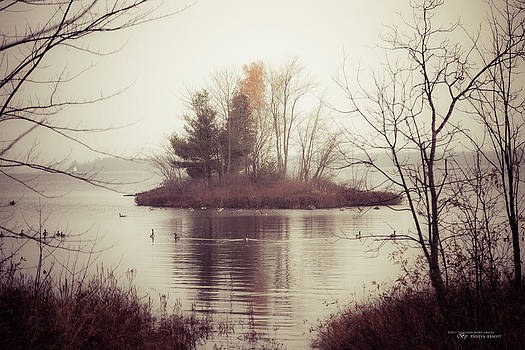 The Morning Calm by Dustin Abbott