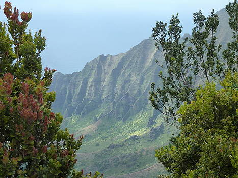 The Napali Coast by Ann Michelle Swadener