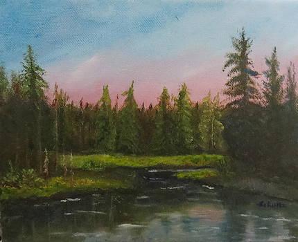 The Northeast by Sharon Schultz