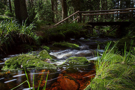 the Oder in the Harz area  by Andreas Levi