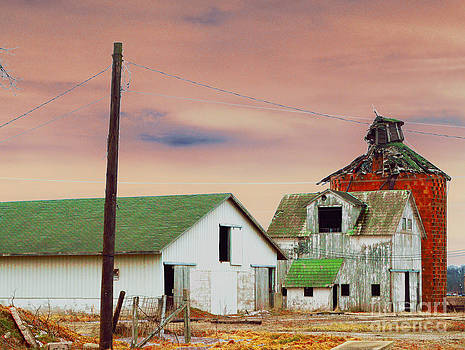 The Old Barns by Alys Caviness-Gober