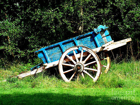 Joe Cashin - The old Blue cart