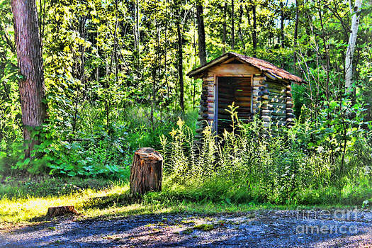 The Old Shed by Cathy  Beharriell