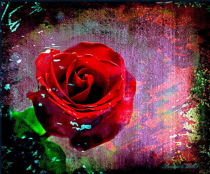 The Painted Rose by Bonnie Willis